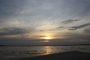 navarre 8-11-2011