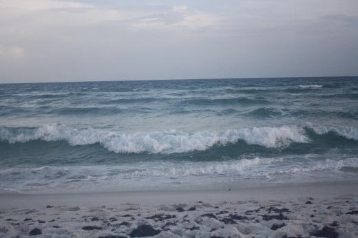 crashing waves & seaweed